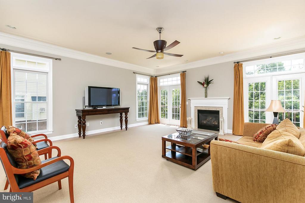 Light filled family room w/gas fireplace - 43239 PARKERS RIDGE DR, LEESBURG