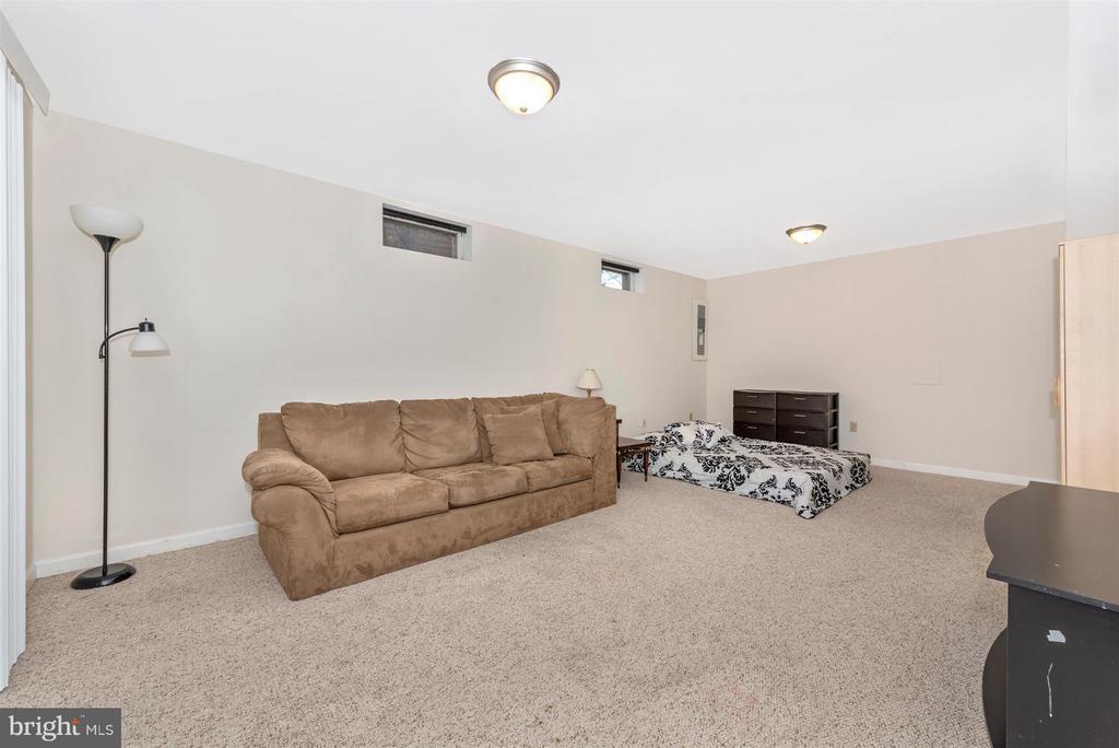 Basement-Bonus Room - 6570 NYASA BND, NEW MARKET