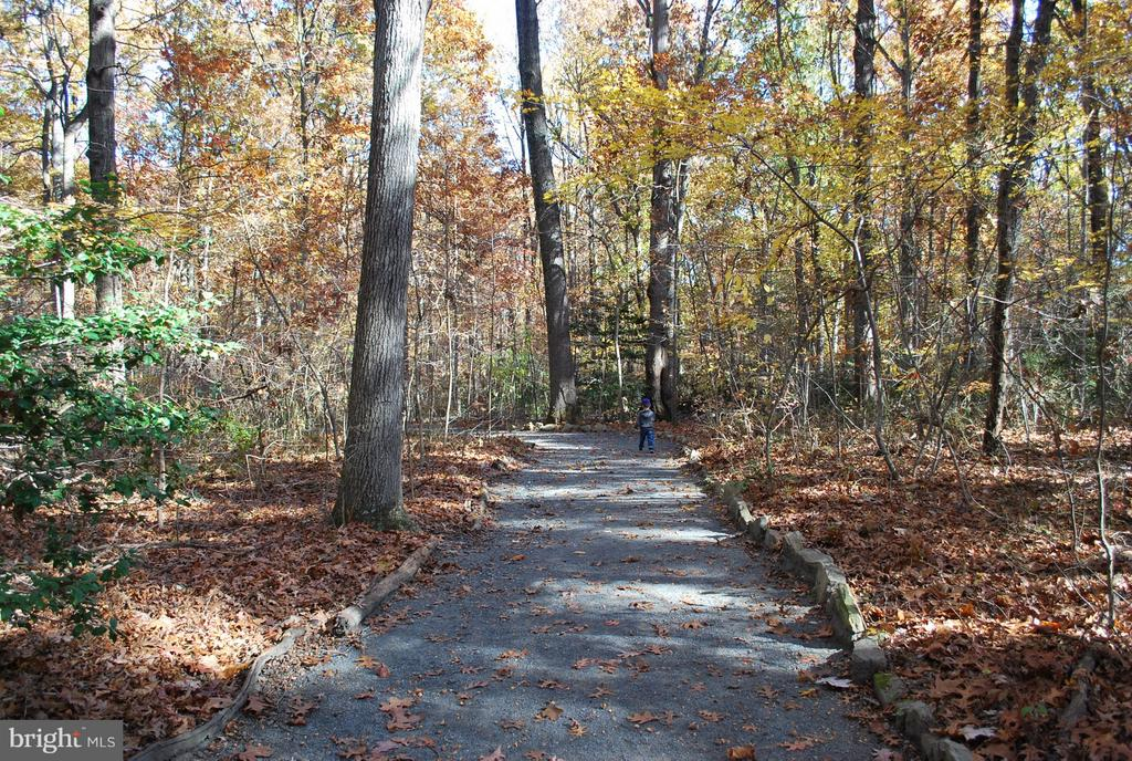 Great comm amenities including miles of trail - 2358 SOFT WIND CT, RESTON