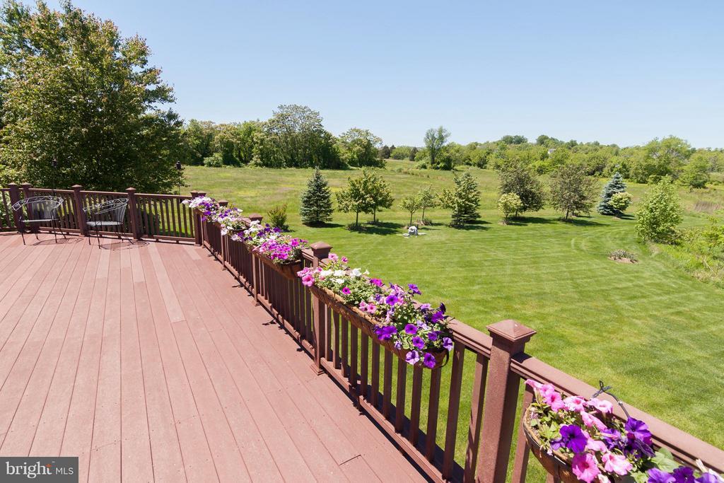 Extensive landscape, trees, garden beds - 41154 GRENATA PRESERVE PL, LEESBURG