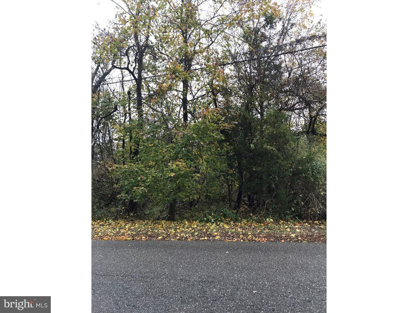 Land for Sale at FOREST GROVE Road Vineland, New Jersey 08360 United StatesMunicipality: Franklin Township