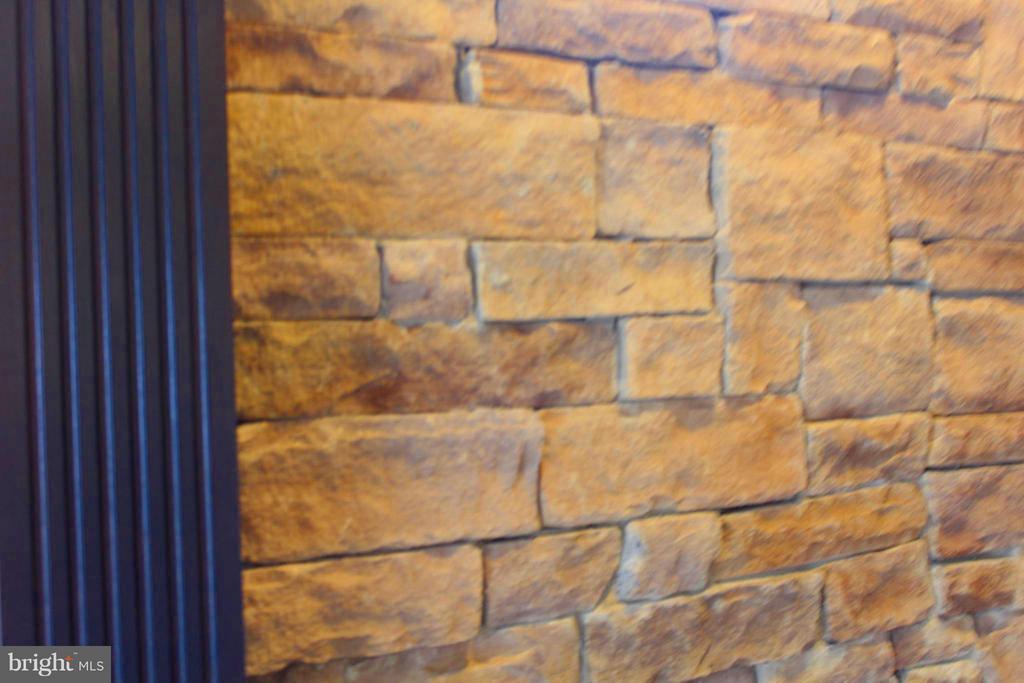 Gorgeous Stone Accent  Wall - 41433 AUTUMN SUN DR, ALDIE