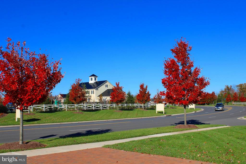 The main drive in is Gorgeous in the Fall - 41433 AUTUMN SUN DR, ALDIE