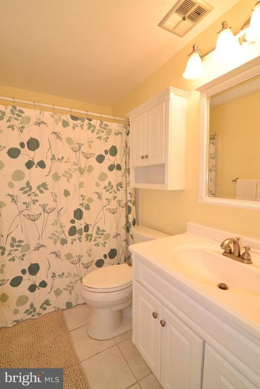 Hall Bath- Updated - 12866 GRAYPINE PL, HERNDON