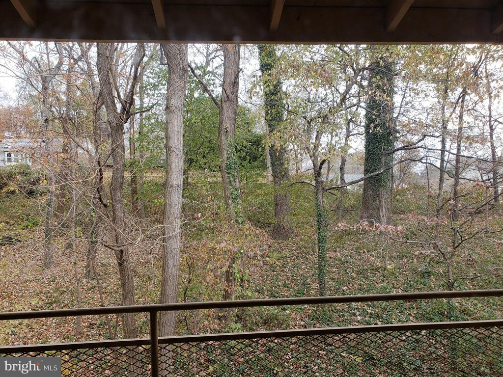 Serene wooded view from private balcony - 7376 LEE #204, FALLS CHURCH