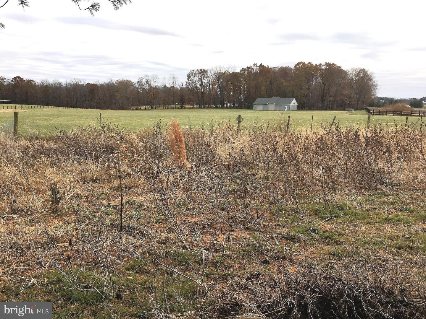 Farm for Sale at 43129 Lucketts Rd Leesburg, Virginia 20176 United States