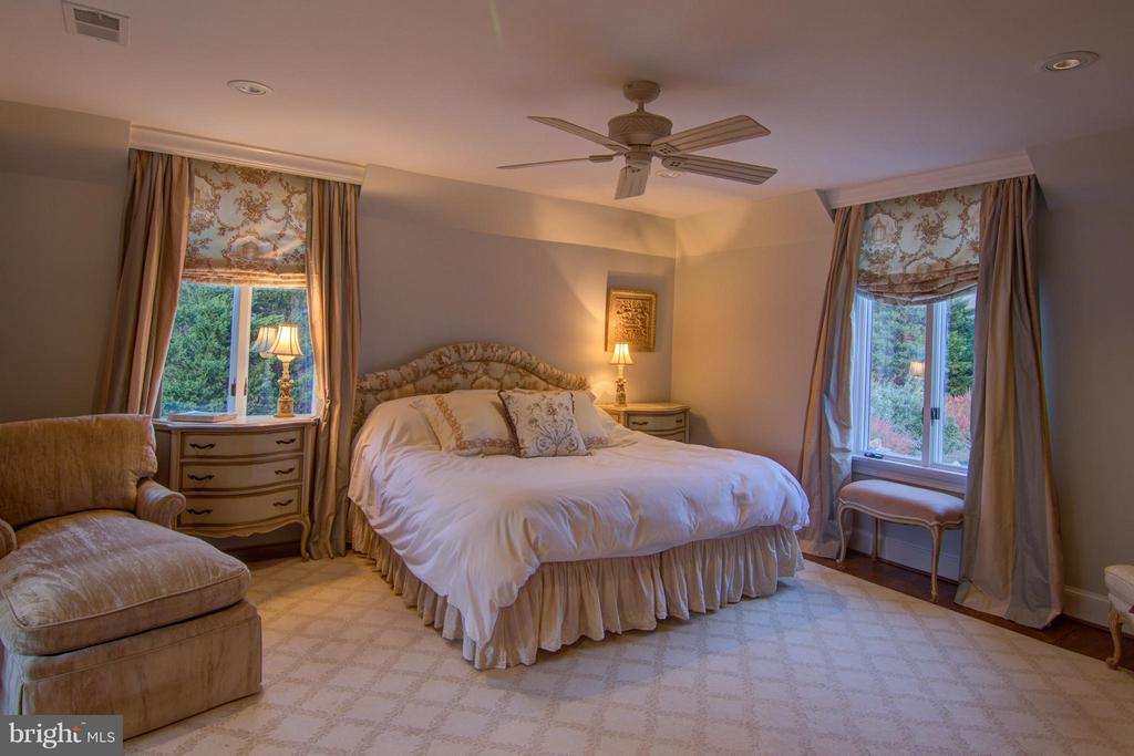 Master Suite with Walk-in Closet - 22030 WILLISVILLE RD, UPPERVILLE