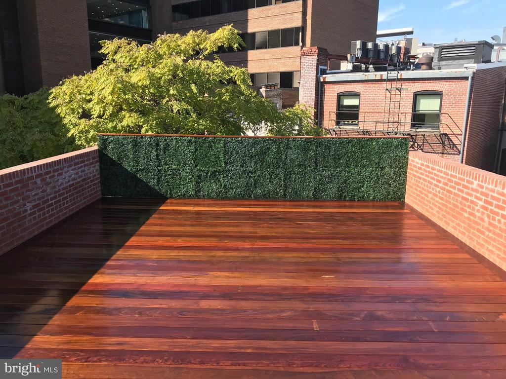 Priv. terrace w/ plumb/gas for outdoor kitchen - 1524 18TH ST NW #7, WASHINGTON