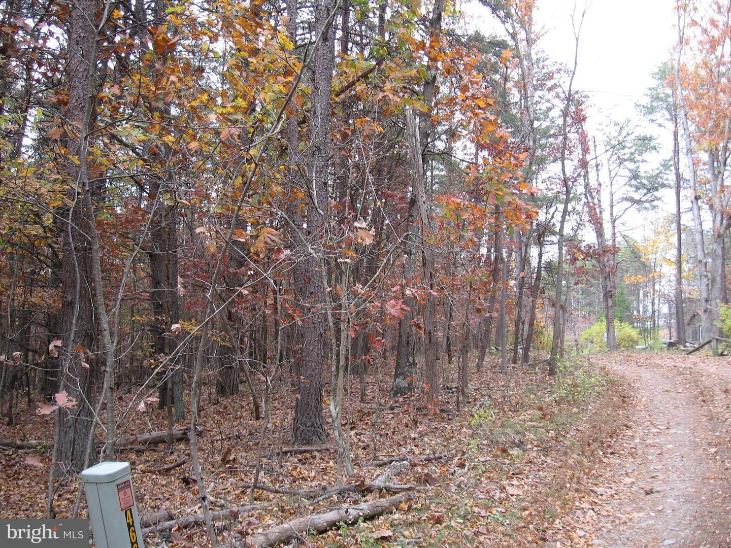 Land for Sale at 15 & 16 Hollow View Rd Berkeley Springs, West Virginia 25411 United States