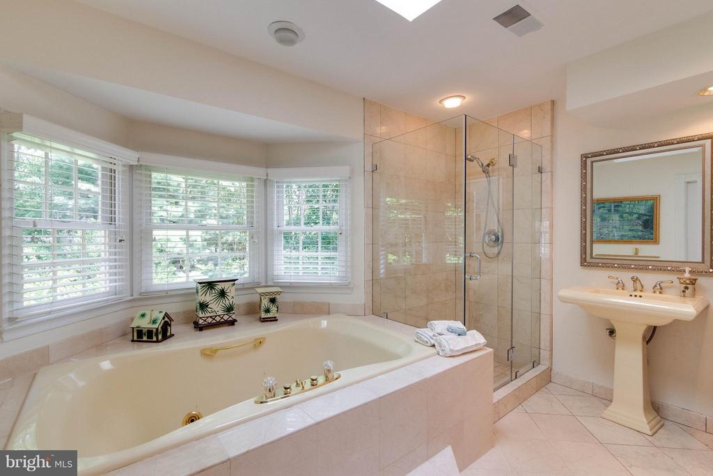 Soaking tub & dual pedestal sinks - 43322 BUTTERFIELD CT, ASHBURN