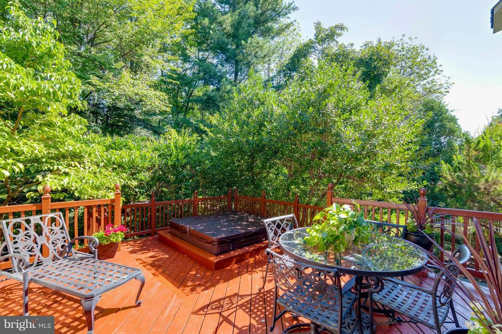 Large Deck and hot tub perfect for entertaining - 43322 BUTTERFIELD CT, ASHBURN