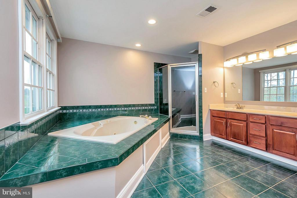 Large soaking tub and separate shower - 7100 MONUMENT CT, SPOTSYLVANIA