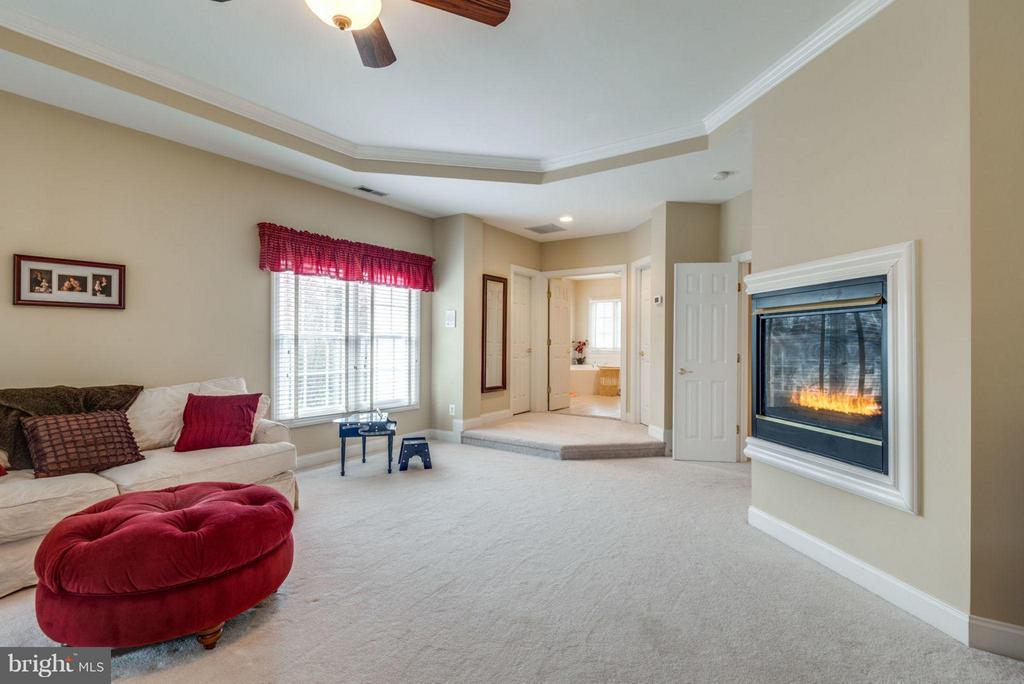 Fireplace in Master Suite for added warmth - 42966 CORALBELLS PL, LEESBURG