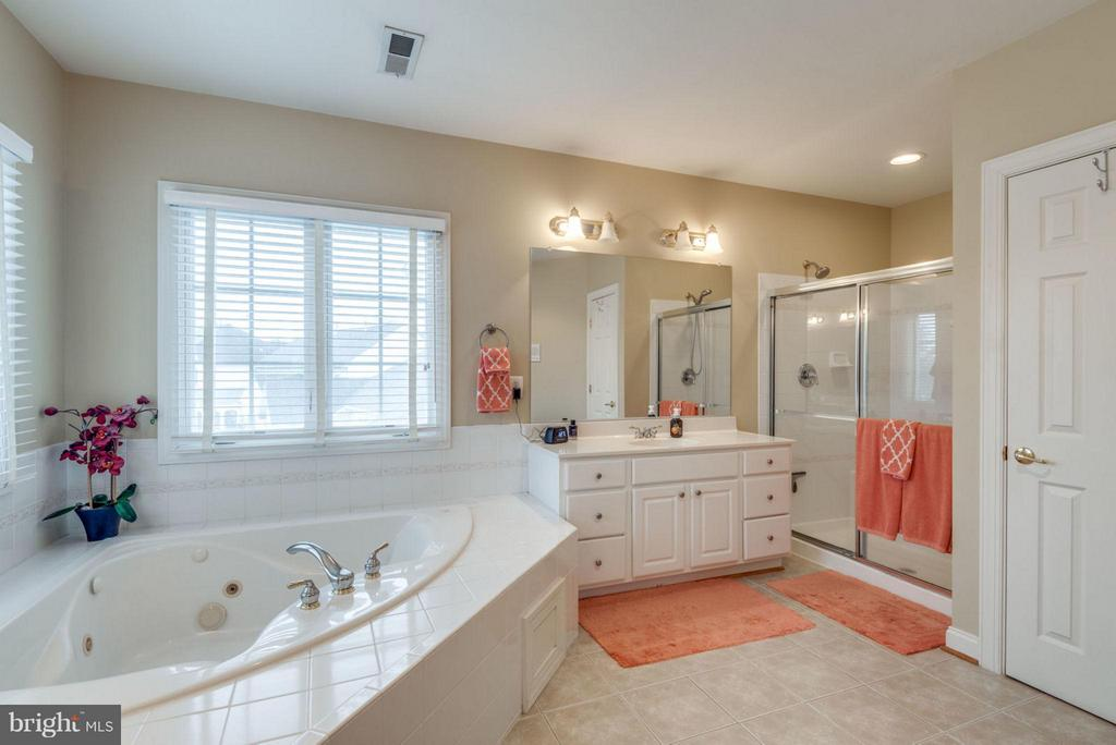 Master Bath with Glass Shower - 42966 CORALBELLS PL, LEESBURG