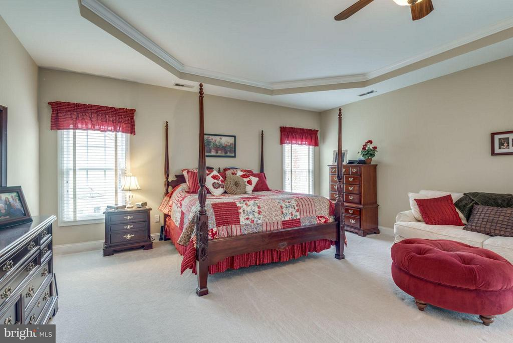 Massive Master Suite with Tray Ceiling - 42966 CORALBELLS PL, LEESBURG