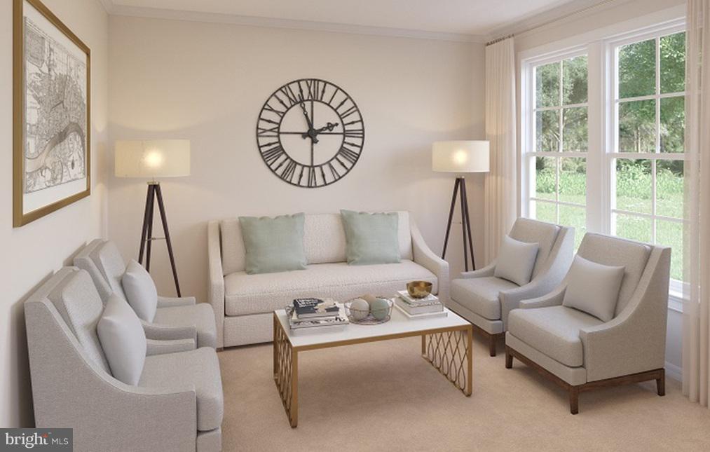 Living Room- Model Home - 21 SHERMANS RIDGE RD, STAFFORD