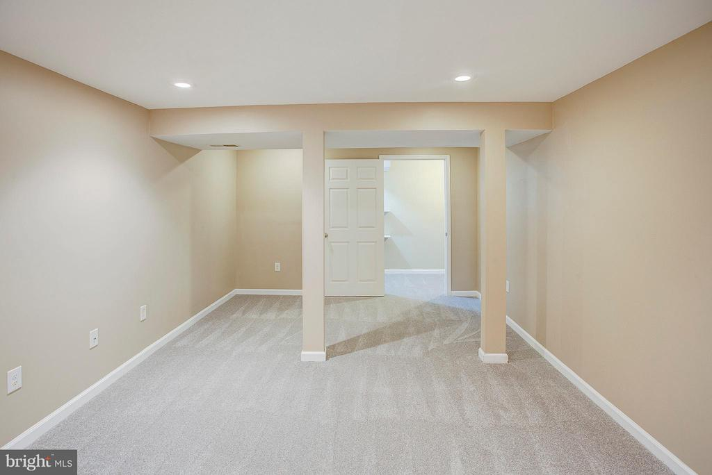 Lower level bonus room with new carpet. - 35086 HARRY BYRD HWY, ROUND HILL