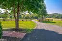 Look out on your land from your front porch. - 35086 HARRY BYRD HWY, ROUND HILL
