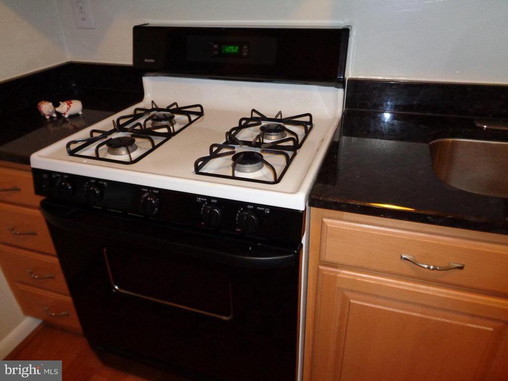 Full size gas stove - 2500 VAN DORN ST N #124, ALEXANDRIA