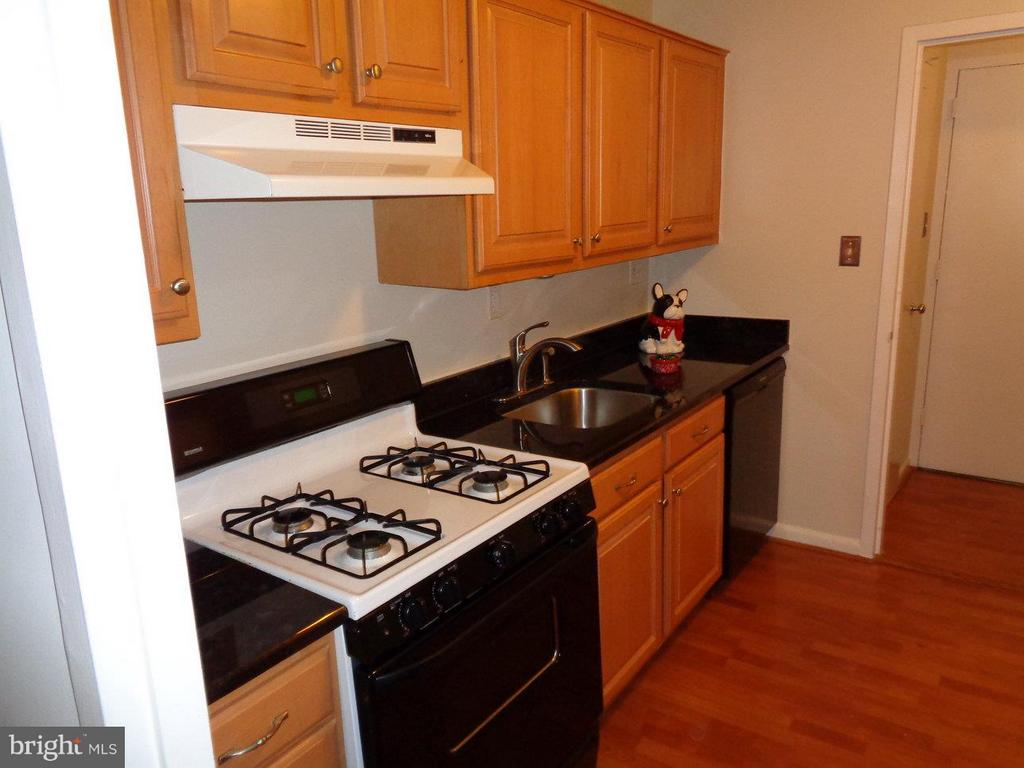 Granite countertops in kitchen - 2500 VAN DORN ST N #124, ALEXANDRIA