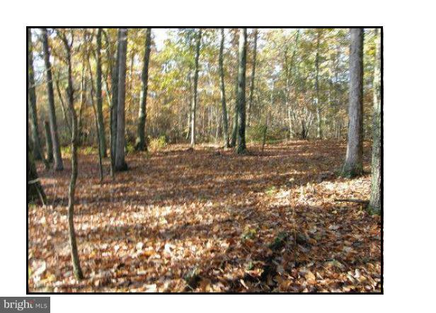 Land for Sale at Tatum Rd Unionville, Virginia 22567 United States