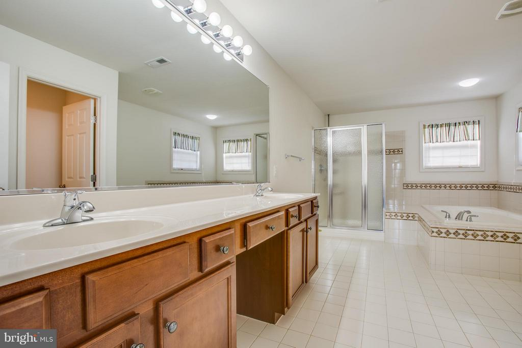 Spa day! Soaking tub, w/in shower and tall vanity - 81 FOUNTAIN DR, STAFFORD