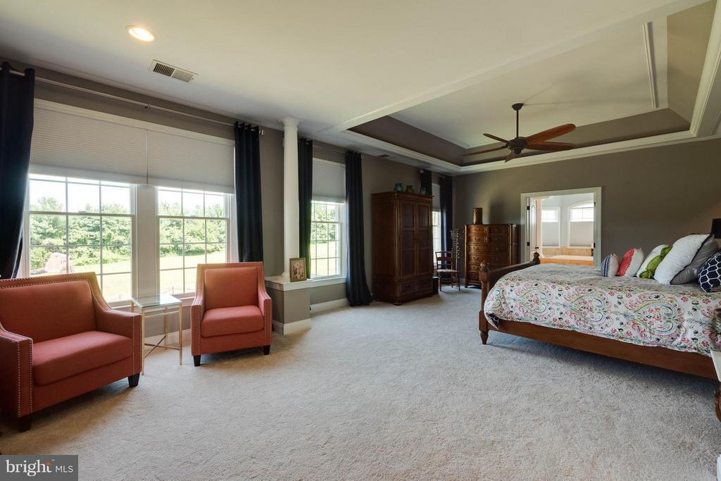 Master with Sitting Room and Tray Ceiling - 40728 CHEVINGTON LN, LEESBURG
