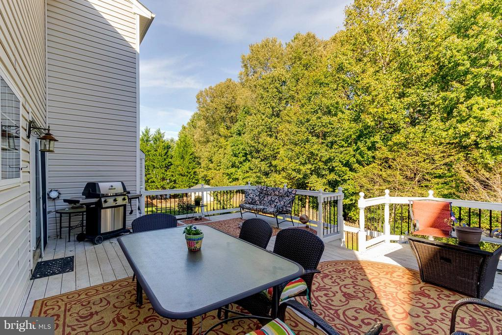 25 x 18 Maintenance Free Deck - 6412 TINKLING SPRINGS CT, MANASSAS