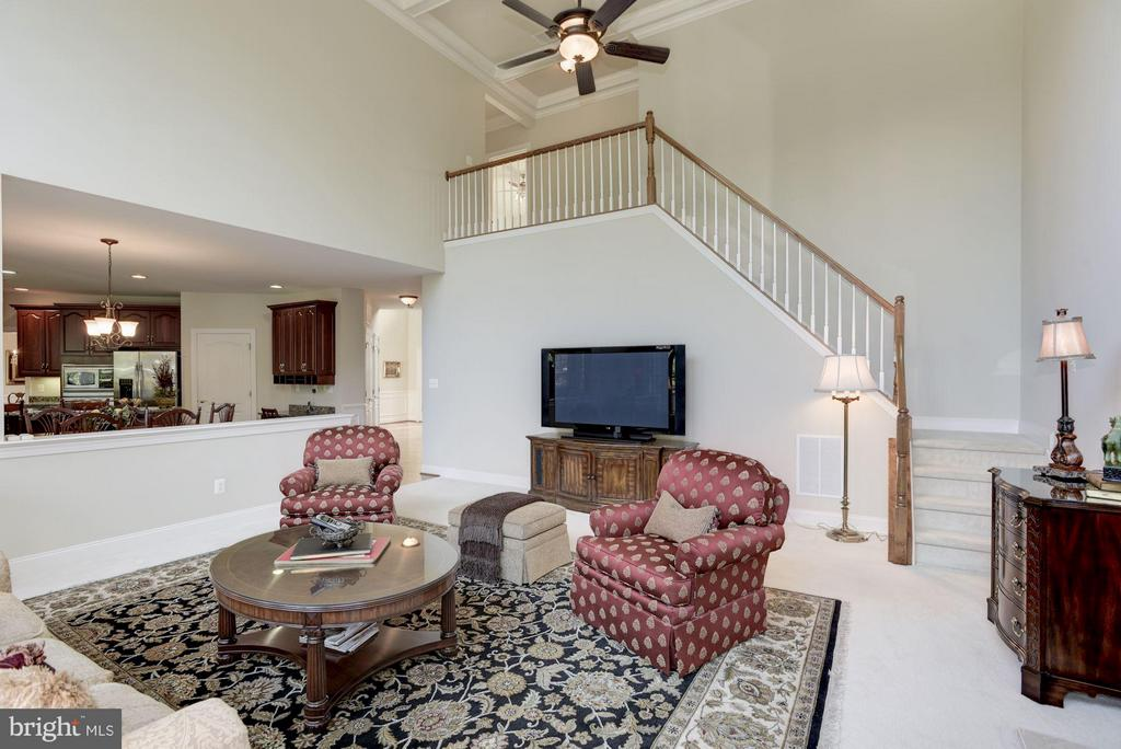 Family Room - 20234 KENTUCKY OAKS CT, ASHBURN