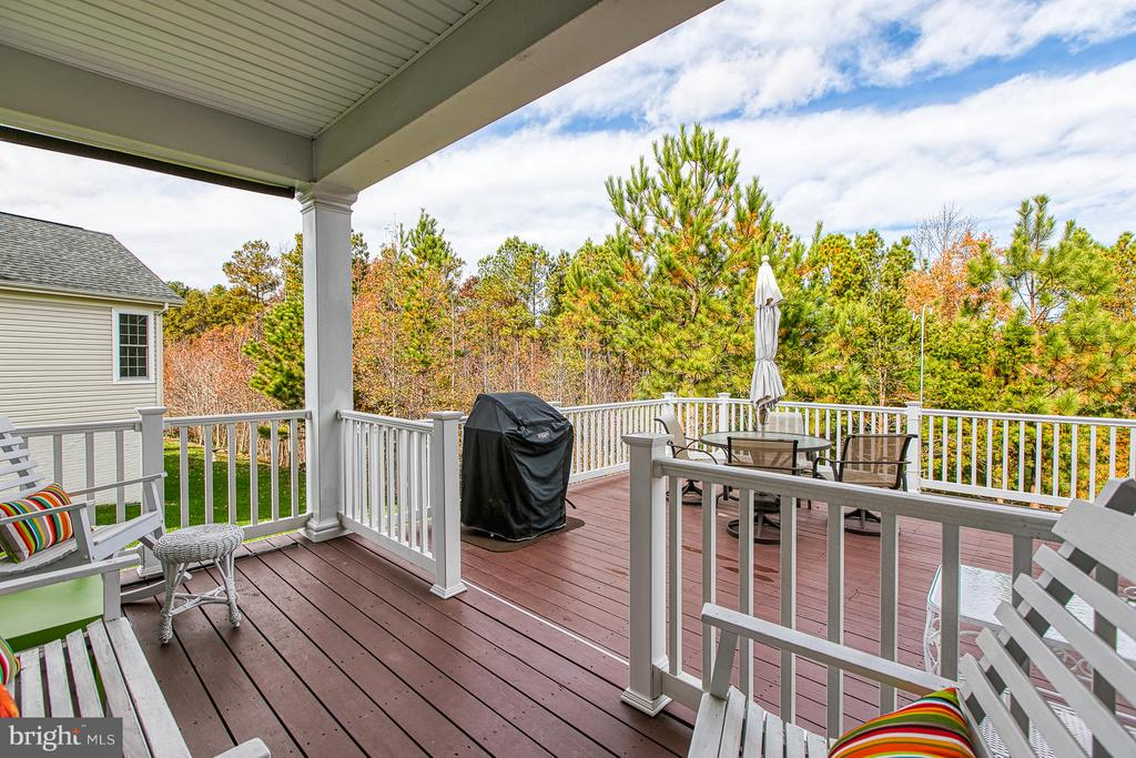 What a view! - 9791 BIG BETHEL CIR, FREDERICKSBURG