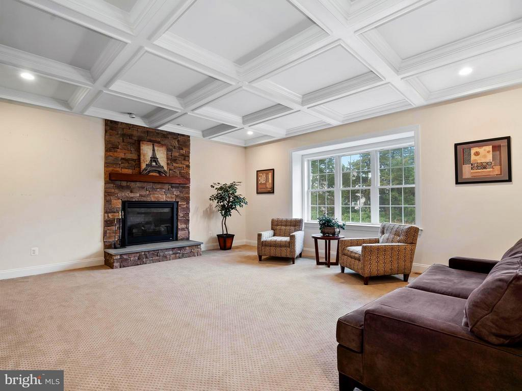 Huge Family Rm w/ Coffered Ceiling & view of back - 41433 AUTUMN SUN DR, ALDIE