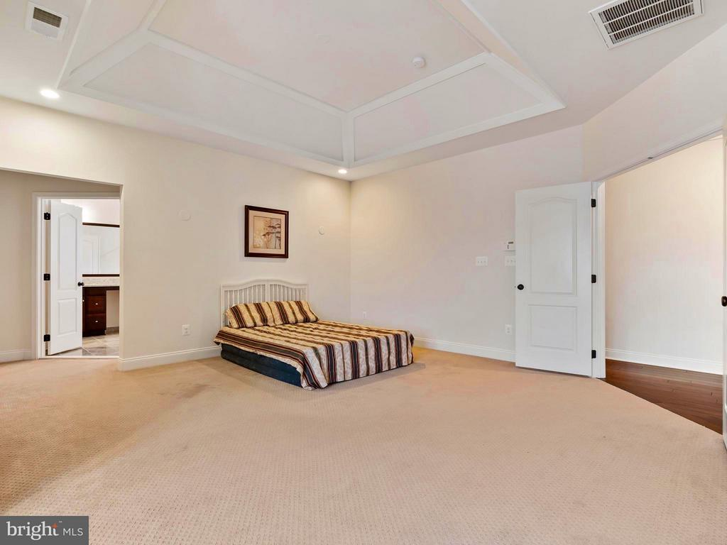 French Doors lead into the Master Suite - 41433 AUTUMN SUN DR, ALDIE