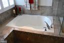 Enjoy  Soaking in your bubble bath!! - 41433 AUTUMN SUN DR, ALDIE