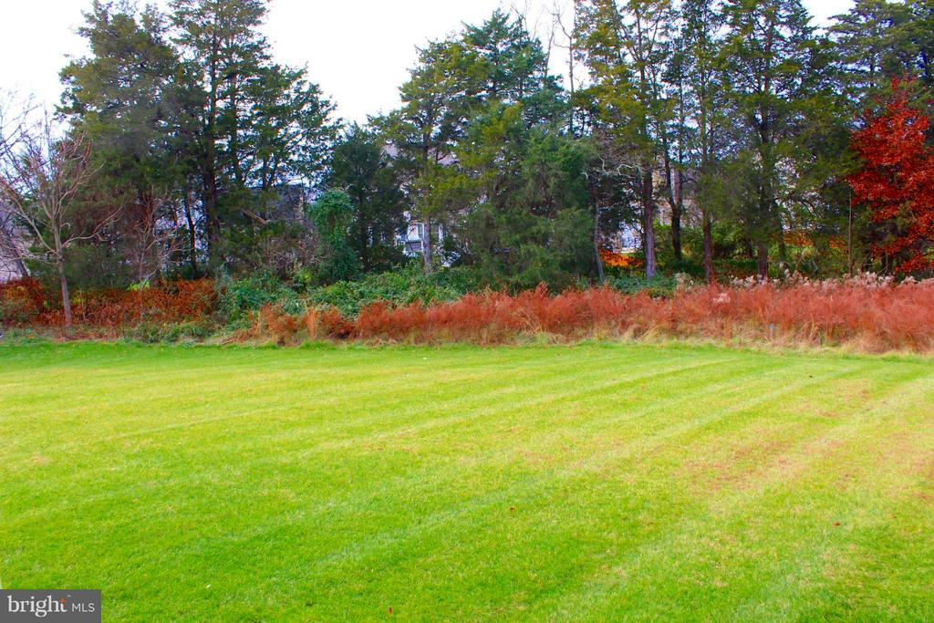 Great Private Backyard - 41433 AUTUMN SUN DR, ALDIE