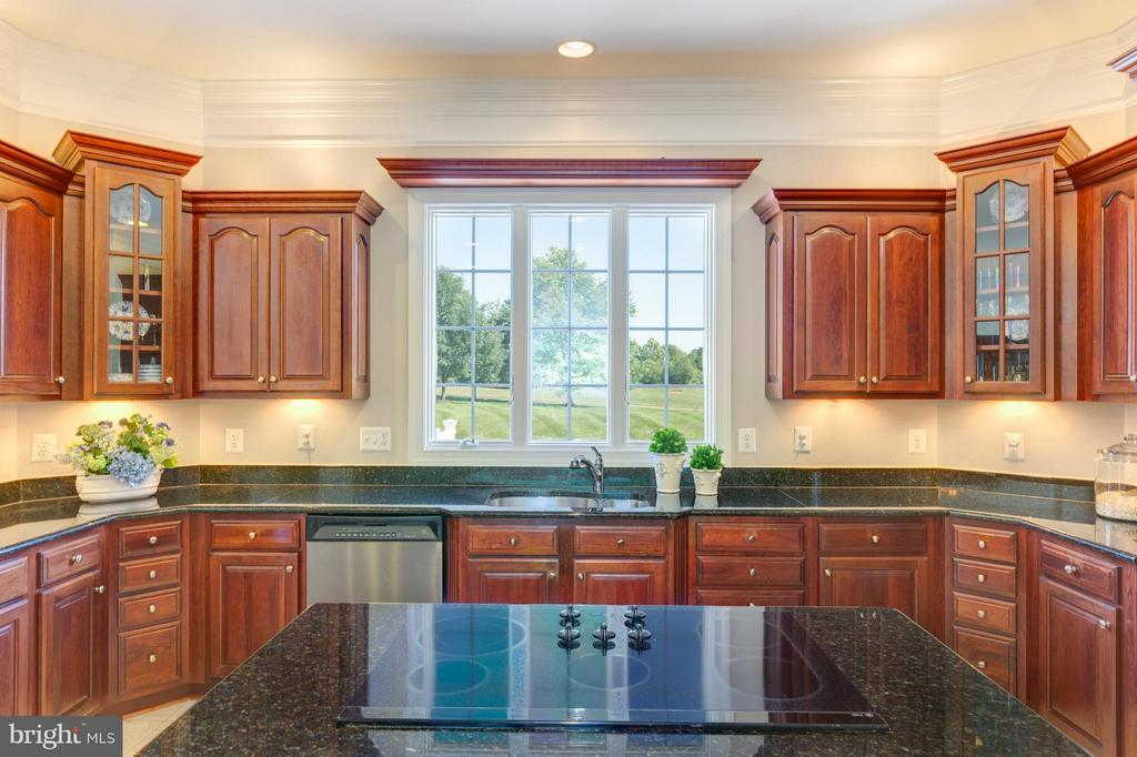 Upgraded Lighting above and below Cabinets - 41605 SWIFTWATER DR, LEESBURG