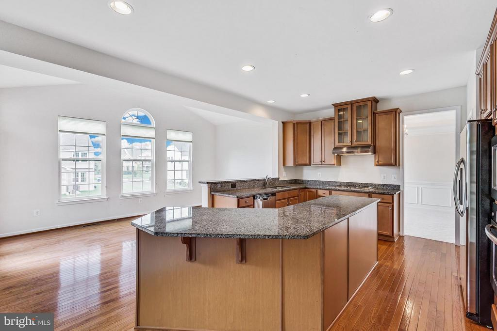 massive island in gourmet kitchen - 42419 MADTURKEY RUN PL, CHANTILLY
