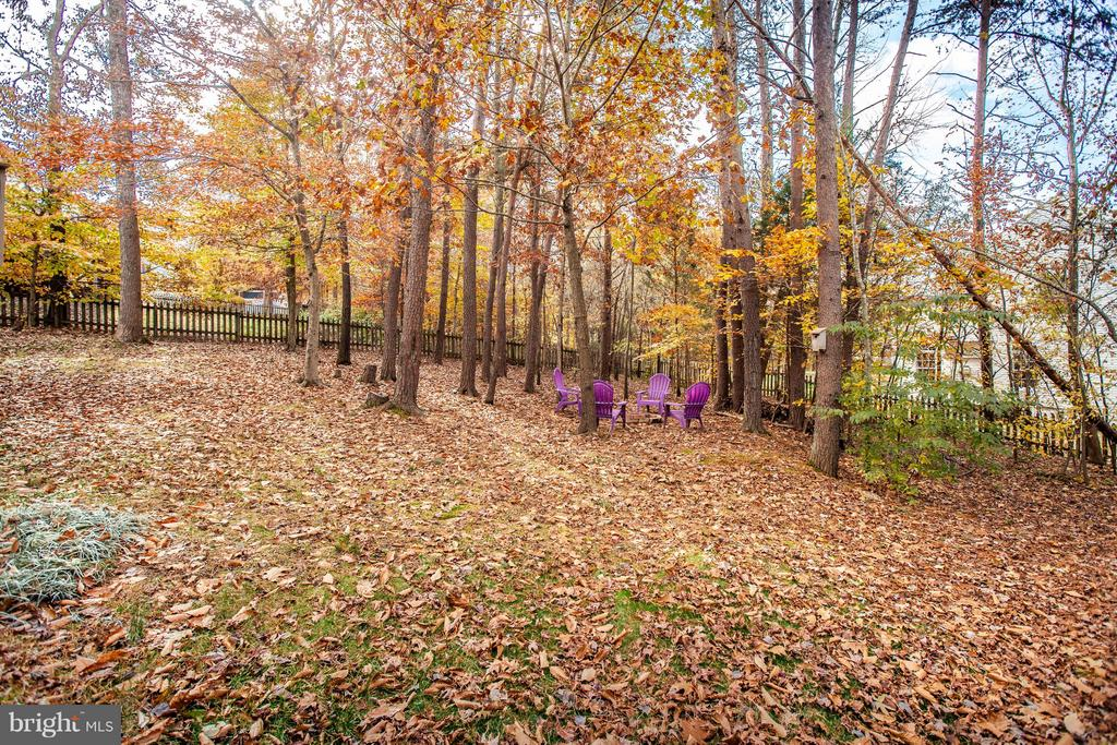Privacy with the trees - 11708 S OXBOW CT, FREDERICKSBURG