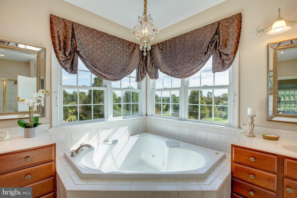 Master Bath - 16628 ELK RUN CT, LEESBURG