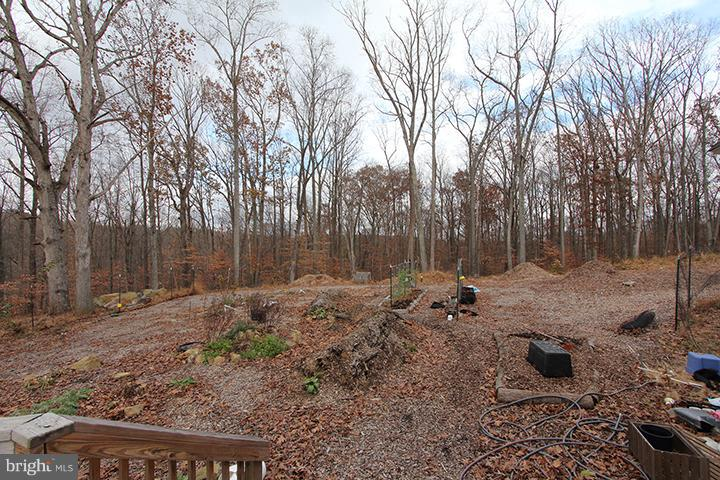 11+ acre lot with a walking trail of the property - 19319 HARMONY CHURCH RD, LEESBURG