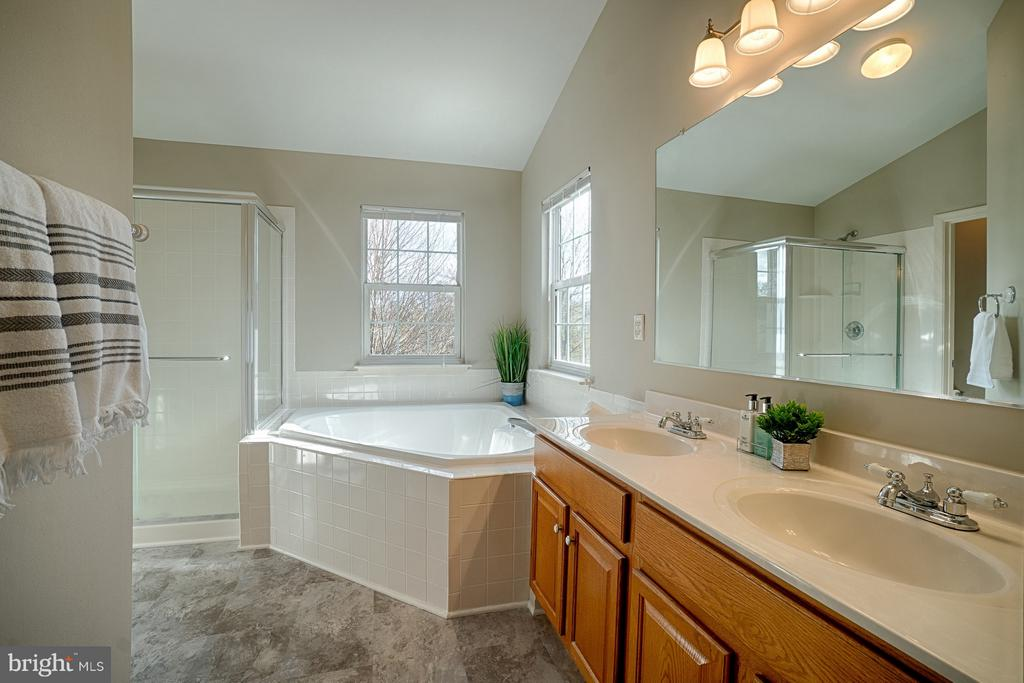 Master bathroom with updated fixtures - 43189 CARDSTON PL, LEESBURG