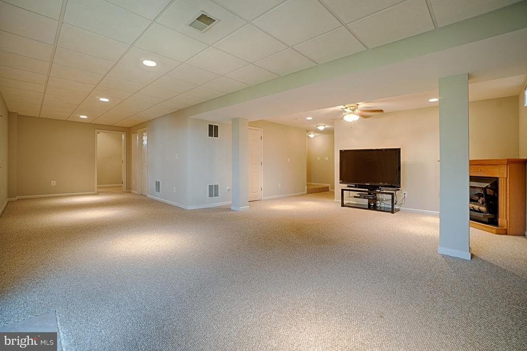 Huge LL Rec Room with fresh paint & gas FP - 43189 CARDSTON PL, LEESBURG