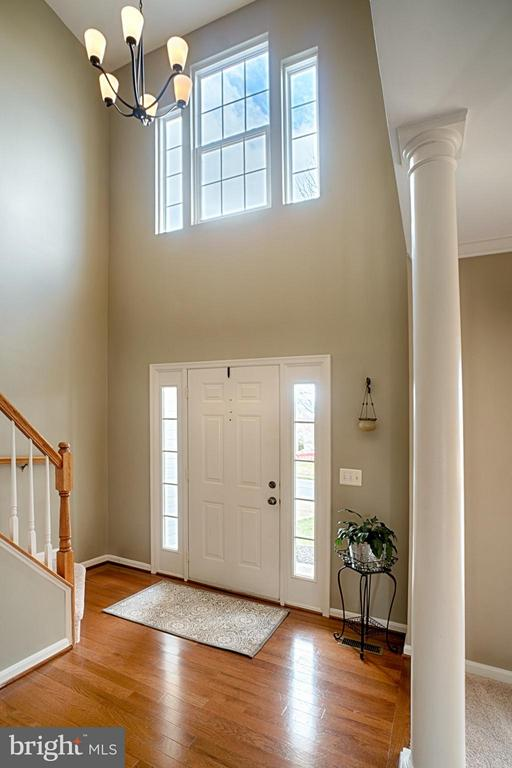 Two Story Foyer with lots of light and wood floors - 43189 CARDSTON PL, LEESBURG