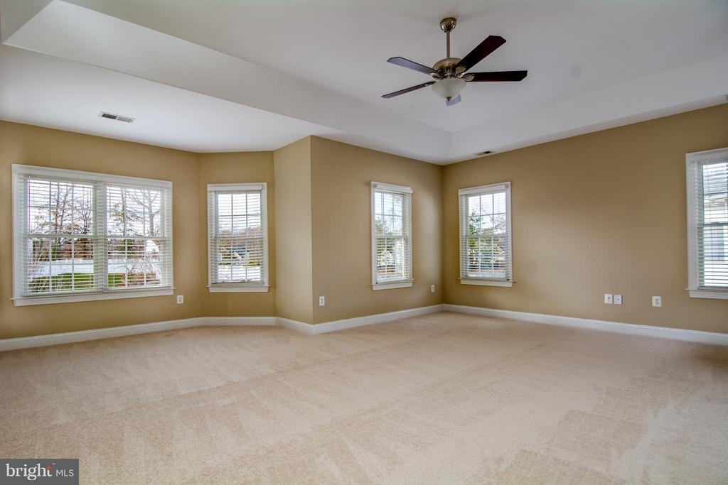 ENORMOUS MBR HAS TONS OF WINDOWS - 12282 TIDESWELL MILL CT, WOODBRIDGE