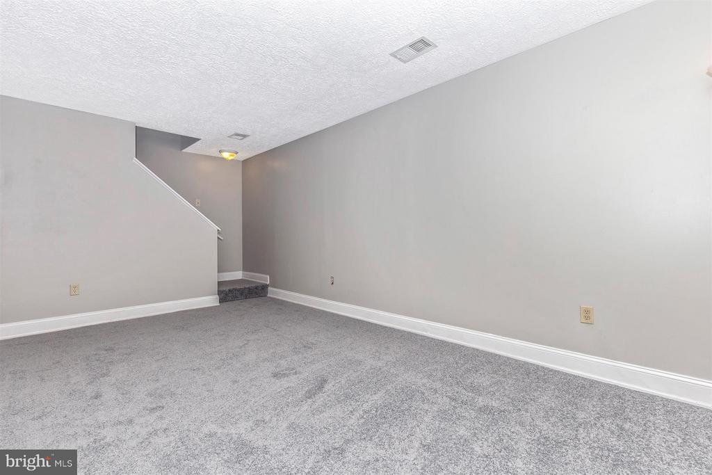 BASEMENT FULLY FINISHED WITH NEW CARPET - 19217 DEEP RUN CT, GERMANTOWN