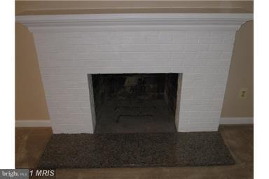 Wood Burning Fireplace - 14712 LOCK DR, CENTREVILLE