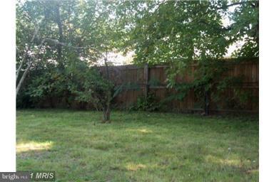 Backyard - 14712 LOCK DR, CENTREVILLE