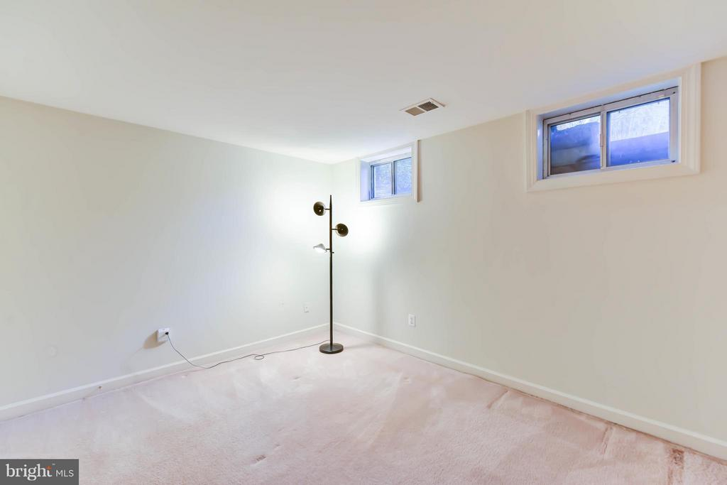 Room in Lower Level - 8608 WOODLAND HEIGHTS CT, ALEXANDRIA