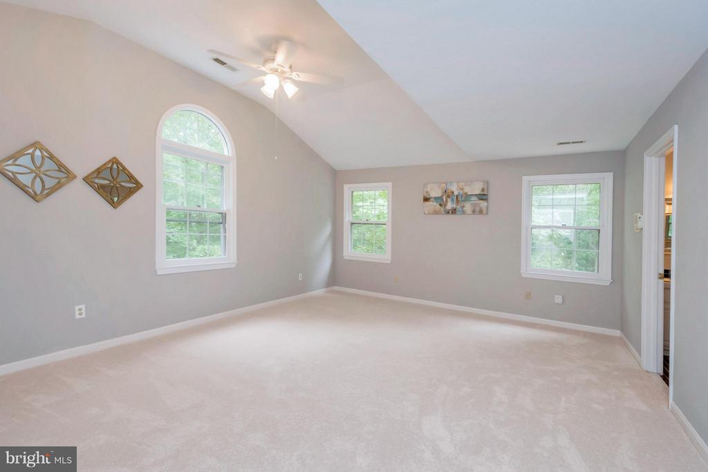 Master suite with vaulted ceiling - 92 OLDE CONCORD RD, STAFFORD