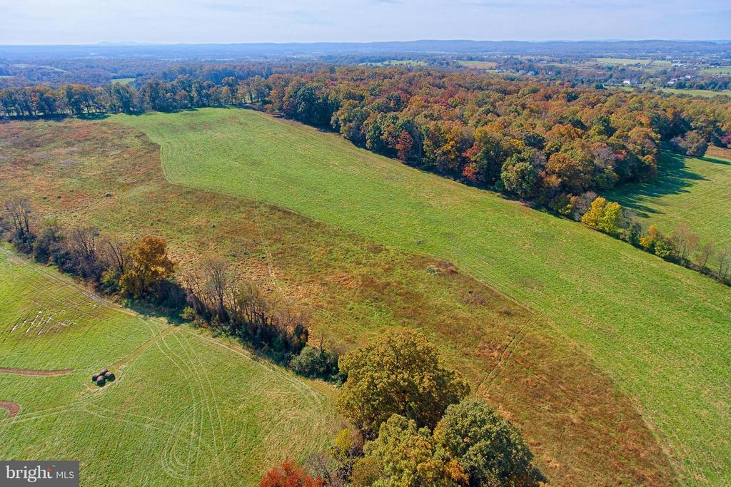 Rolling Pastures and Hardwood -Proposed Lots 3 & 4 - 43660 SPINKS FERRY RD, LEESBURG