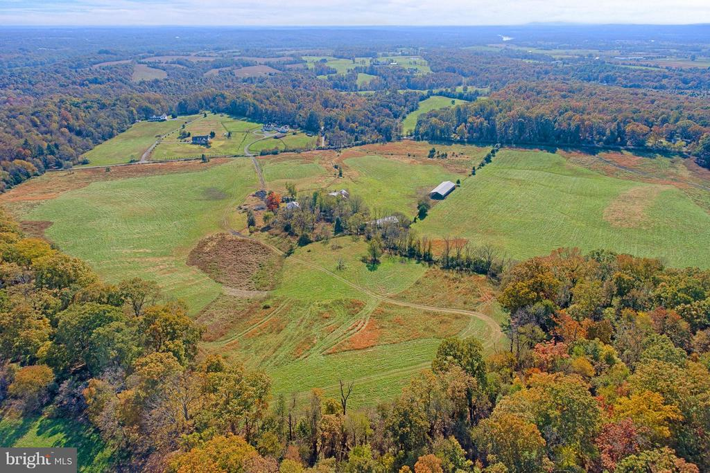 View from Hardwoods into Rolling Pastures - 43660 SPINKS FERRY RD, LEESBURG